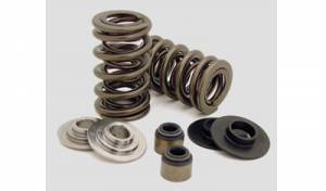 Engine & Components - Valve Springs