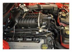 Roush Performance - Roush Performance 421388 Phase 1 ROUSHcharger Supercharger Kit - Image 4